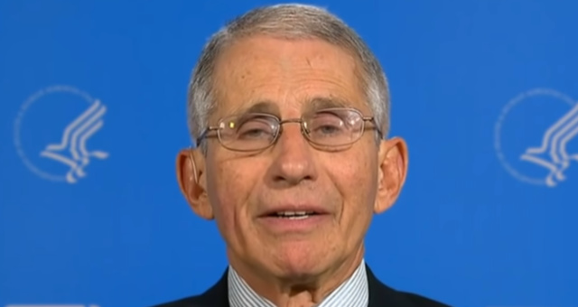 Dr. Fauci Shoves Back Against Media Critics Trying To Dump On Trump For Reopening Country 'Too Soon' After COVID-19 Outbreak
