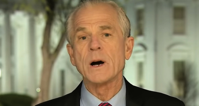 Economist Peter Navarro Gives Stern Warning To Coronavirus Price Gougers: 'We're Going To Come For You'
